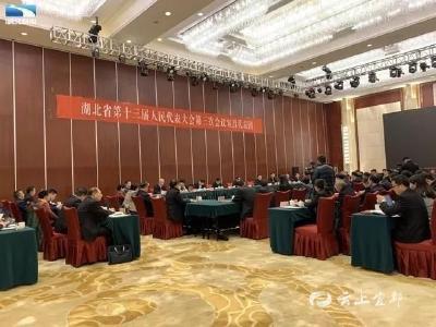 谭建国代表:建议将磷石膏综合利用上升为省级战略