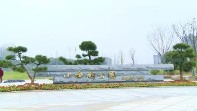 【不忘初心 牢记使命】 市住建局:增绿添景  建设生态宜居宜都