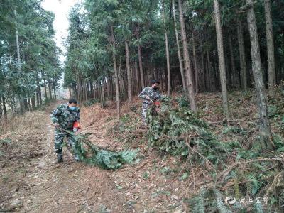 立体防护 为疫情防控和森林防火保驾护航