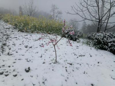 感应力超强!今天,宜昌和福州都遭遇了魔性天气