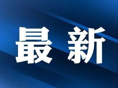宜昌这个基层党组织被通报表扬