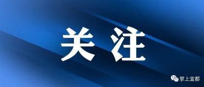 宜昌传达学习习近平总书记考察湖北重要讲话精神