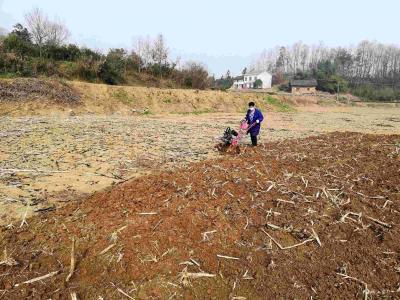 市农业农村局:四措并举 全力保障春季农业生产