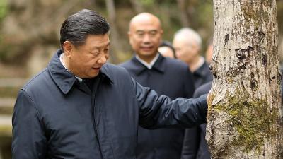 """陕西行首站考察秦岭 习近平要求做好这个""""卫士"""""""