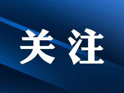 宜昌:专题研究港口物流产业高质量发展