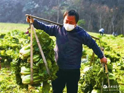 【三峡日报】宜都:凝聚全民抗疫的磅礴力量