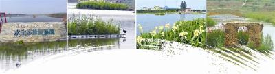 【三峡日报】把绿色装进存折  聚焦宜都市生态文明发展路径