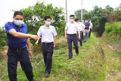 李泽刚到红花套镇、高坝洲镇调研水旱灾害防御工作