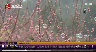 【三峡广电】宜都市全心畈村入选全省乡村旅游领域双创带动就业示范单位