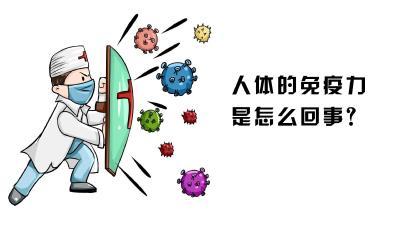 人体的免疫力是怎么回事?