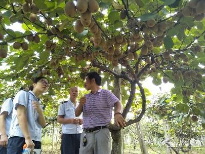 建始培训新型职业农民 在实践中增长技能