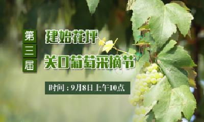 直播:建始县花坪镇第三届关口葡萄采摘节