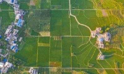 """新土地管理法:三块地改革将农民土地权益""""大写"""""""