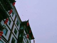 雪后初晴, 玉树琼枝, 掩映如画,长岭岗欢迎您!