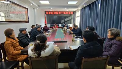 县委组织部组织老干部座谈为建始发展建言献策