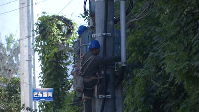 解决供电卡口 野三关供电所加快配网改造