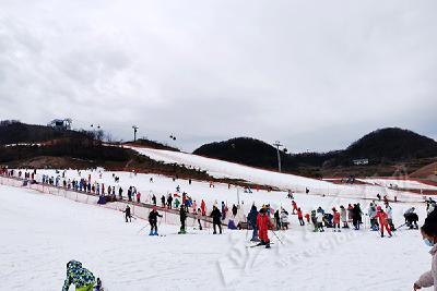 日均接待过千人 巴东绿葱坡滑雪场人气旺