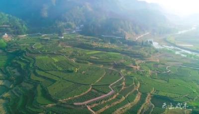 咸丰县新增2个省级生态乡镇7个省级生态村