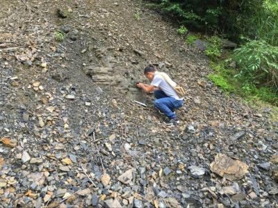县国土局:全面开展汛期地质灾害核查