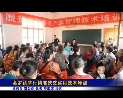 高罗镇举行精准扶贫实用技术培训
