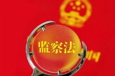 监察法实施一周年,为共同反对腐败贡献中国方案