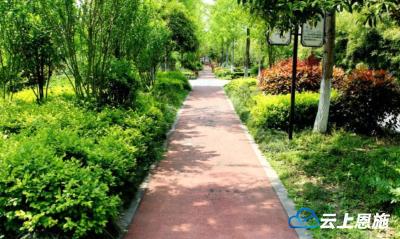 宣恩:绿意盎然的生态美景吸引市民游客驻足