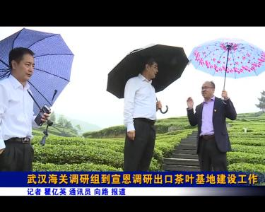 武汉海关调研组到宣恩调研出口茶叶基地建设工作
