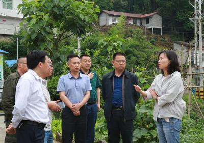 习覃到晓关侗族乡、李家河镇调研精准扶贫和防汛工作