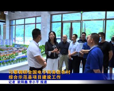 习覃调研全国电子商务进农村综合示范县项目建设工作
