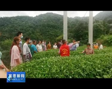 长潭河:农技服务走进田间地头