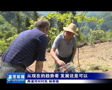 《记者驻乡村》长潭河侗族乡两溪河村 发展猕猴桃产业 拓宽群众致富路