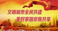 陈新林:明确责任 细化任务 整改到位