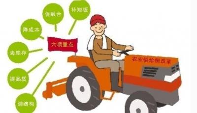 农业供给侧结构性改革步伐加快   看有哪些明显成效