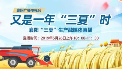 """【直播】""""又是一年三夏时""""襄阳""""三夏""""生产融媒体直播"""