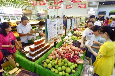 鄂州果蔬产业联盟挂牌成立:打造一小时鲜果蔬流通圈