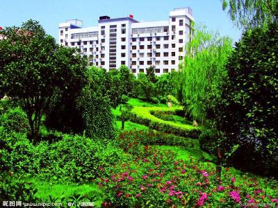 文明创建长效化·提升市民幸福感   清理花坛绿地扮靓城区环境