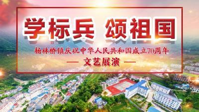 杨林桥镇学标兵 颂祖国文艺展演