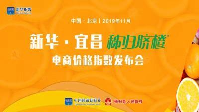 直播丨新华·宜昌秭归脐橙电商价格指数今天在京发布