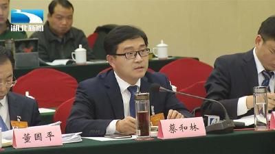 鄂州代表团蔡和林代表:加大对生态文明示范区的支持力度