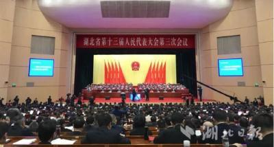 省领导参加鄂州代表团审议:推动光谷科技创新大走廊向鄂州延伸