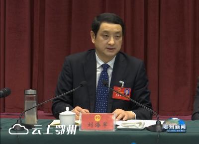 省人大代表刘海军:对接、服务、融入 做大做强武汉城市圈