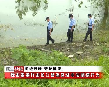 拒绝野味·守护健康 | 我市重拳打击长江禁渔区域非法捕捞行为