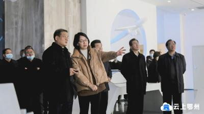 王立调研临空经济区招商及项目建设 陈平参加调研