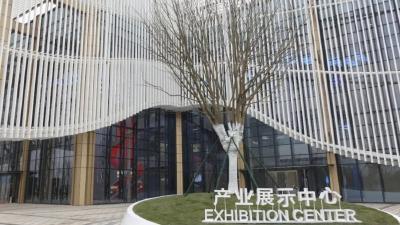 不忘初心 逐梦奋进!鄂州市临空经济区开展成立一周年主题党日活动