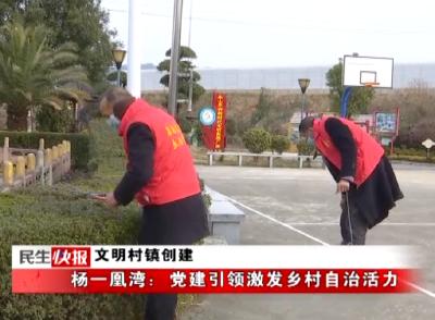 杨一凰湾:党建引领激发乡村自治活力