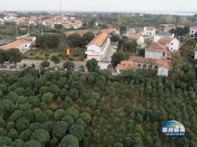 2020年度省级生态乡镇和生态村名单公布  我市4个乡镇10个村上榜
