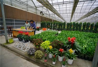 """三产融合 一招""""妙棋""""——荆门市推进农业供给侧结构性改革取得明显成效综述"""