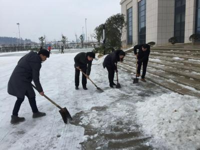 冰雪天中见文明:市不动产登记中心组织党员干部义务除雪