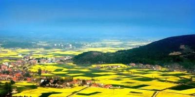 """荆门市2018年度改革""""金点子""""获奖名单"""