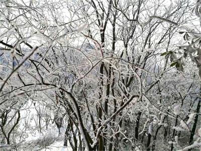 2018年最后一场雪已到来,荆门东宝城管严阵以待~~~